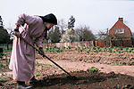 Nuns at Burnham Abbey, an Anglican Contemplative  Augustinian Community of Sister of the Precious Blood. Working in the gardens. Maidenhead Berkshire UK. 1989, 1980s UK