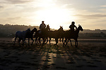 August 15, 2021, Deauville (France) - Horses from the Barrière Deauville Polo Cup at sunrise at the beach in Deauville. [Copyright (c) Sandra Scherning/Eclipse Sportswire)]