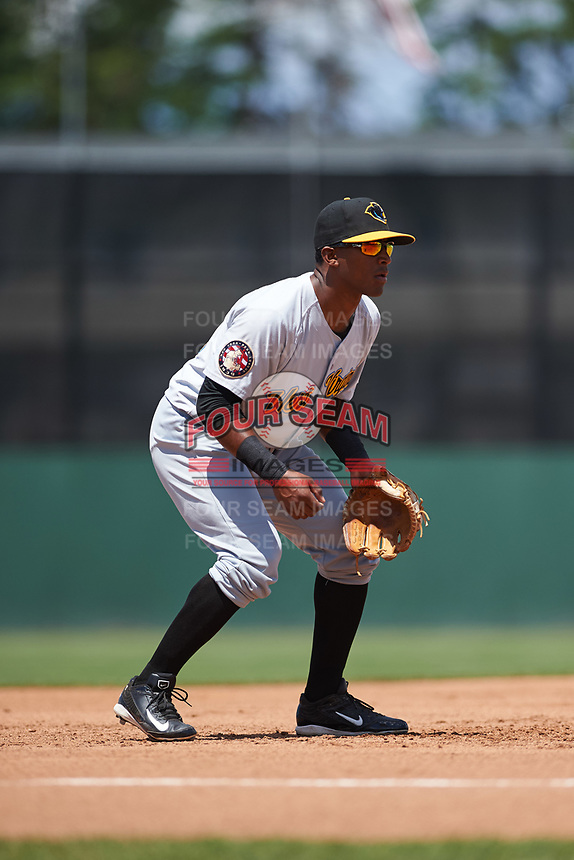 West Virginia Black Bears third baseman Raul Siri (55) during a game against the Batavia Muckdogs on June 25, 2017 at Dwyer Stadium in Batavia, New York.  West Virginia defeated Batavia 6-4 in the completion of the game started on June 24th.  (Mike Janes/Four Seam Images)