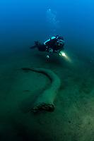 scuba diver exploring a trunk in Tremorgio lake, Leventina valley, Ticino, Switzerland