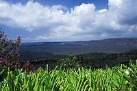 Kilauea Volcano, Hawaii Volcanoes National Park, Big Island