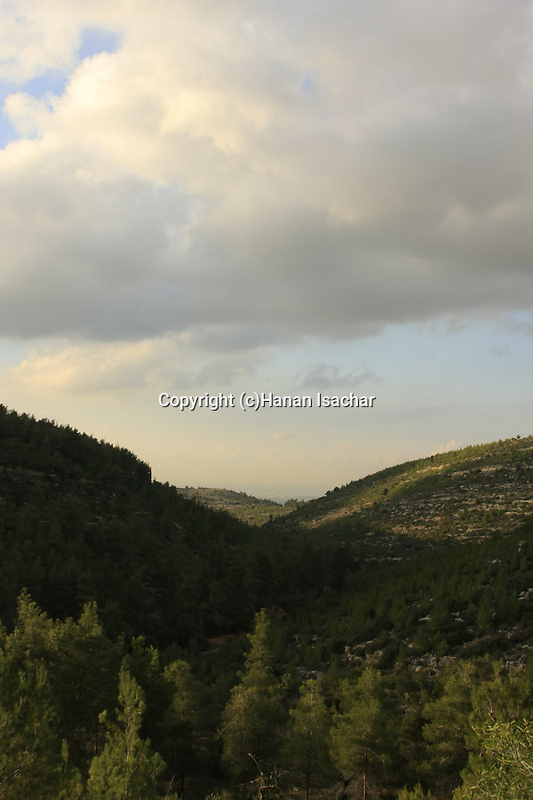 Israel, Jerusalem Mountains, a view from Diefenbaker road