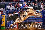 2015 Pro Bull Riding - Iron Cowboy VI
