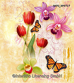 Alfredo, FLOWERS, BLUMEN, FLORES, paintings+++++,BRTOWP0717,#f#, EVERYDAY ,butterfly, butterflies