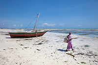 Jambiani, Zanzibar, Tanzania.  Woman Walking out to Tide Flats at Low Tide, to tend her seaweed crop.