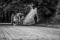 early breakaway group.<br /> <br /> 2nd Dwars door het Hageland 2017 (UCI 1.1)<br /> Aarschot > Diest : 193km