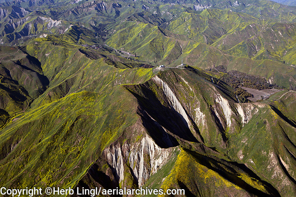 aerial photograph of yellow wildflowers in spring in the coastal mountains north of Ventura, California