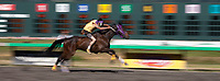 Battle of Horse Nation, Indian Horse Relay Racing, Emerald Downs, Auburn, Washington, WA, America, USA.
