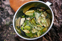 A mug of coca tea, mate de coca, sits atop Pachachutec Pass after being poured in the Lares Valley, on May 16, 2008. The tea is made from the leaves of the coca plant and has been found to have properties to help both symptoms of high altitude sickness and tiredness.
