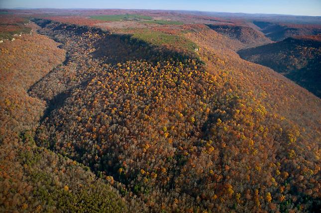 Autumn in Savage Gulf, South Cumberland Mountains