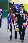 FUNABASHI,JAPAN-DECEMBER 25: Satono Diamond,ridden by Christophe Lemaire,after winning the Arima Kinen at Nakayama Racecourse on December 25,2016 in Funabashi,Chiba,Japan (Photo by Kaz Ishida/Eclipse Sportswire/Getty Images)