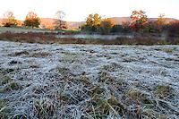Frost in Albemarle County, VA. Photo/Andrew Shurtleff