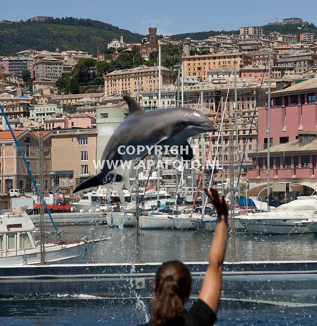 Italië, 180814<br /> Ligurië, dolfijnenshow bij het aquarium van Genua met in de achtergrond Genua.<br /> Foto: Sjef Prins- APA Foto