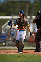 during the WWBA World Championship at the Roger Dean Complex on October 20, 2018 in Jupiter, Florida.  .  (Mike Janes/Four Seam Images)