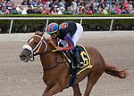 February 1st, 2020: Tonalist's Shape with jockey Irad Ortiz Jr. on board wins The Forward Gal Stakes G3 at Gulfstream Park Race Track in Hallandale Beach, Florida. Liz Lamont/Eclipse Sportswire/CSM