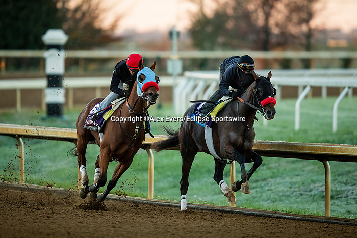 October 31, 2020: Wildman Jack, trained by trainer Doug F. O'Neill, exercises in preparation for the Breeders' Cup Turf Sprint at  and Hot Rod Charlie, trained by trainer Doug F. O'Neill, exercises in preparation for the Breeders' Cup Juvenile at Keeneland Racetrack in Lexington, Kentucky on October 31, 2020. Alex Evers/Eclipse Sportswire/Breeders Cup
