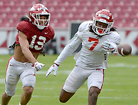 Arkansas receiver Trey Knox (7) reaches to make a catch Saturday, April 3, 2021, ahead of Khari Johnson (19) during a scrimmage at Razorback Stadium in Fayetteville. Visit nwaonline.com/210404Daily/ for today's photo gallery. <br /> (NWA Democrat-Gazette/Andy Shupe)