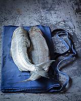 Féra du Lac Léman d' Eric Jacquier, pécheur sur le Lac Léman à Lugrin - Stylisme : Valérie LHOMME<br /> Féra du Lac Léman by Eric Jacquier, a fisherman on Lake Geneva in Lugrin