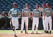 Razorback Baseball