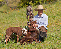 Cowboy with his dogs and riding gear