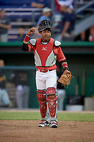 Batavia Muckdogs catcher Pablo Garcia (4) looks into the dugout during a game against the West Virginia Black Bears on June 19, 2018 at Dwyer Stadium in Batavia, New York.  West Virginia defeated Batavia 7-6.  (Mike Janes/Four Seam Images)