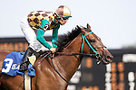 July 12, 2014: CORRECTED CAPTION: Hardest Core, Eriluis Vaz up, wins the Cape Henlopen Stakes at Delaware Park in Stanton Delaware. Trainer is Edward Graham; owner is Andrew Bentley Stables. © Joan Fairman Kanes/ESW/CSM
