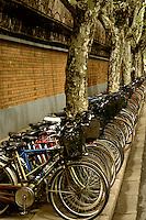 Graphic portrayal of many children's bikes in Shanghai China.