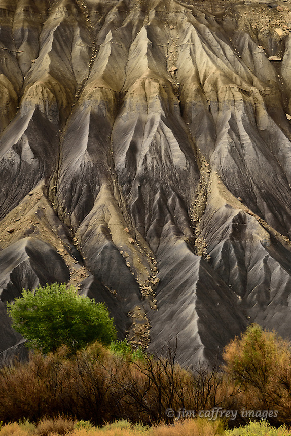 Erosion channels in the alluvium of Caineville Mesa in central Utah provide a textural contrast to the softer vegetation along the Fremont River.
