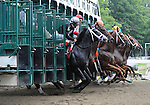 09 August 09: The field breaks from the starting gate for the 3rd race at Saratoga Race Track in Saratoga Springs, New York.
