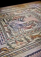 Roman mosaics - Birth of Aphrodite (Venus) Mosaic.  Poseidon Villa Ancient Zeugama, 2nd - 3rd century AD . Zeugma Mosaic Museum, Gaziantep, Turkey.
