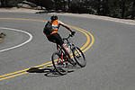 Man biking downhill on Flagstaff Mountain Road, Boulder, Colorado, USA .  John leads private photo tours in Boulder and throughout Colorado. Year-round.