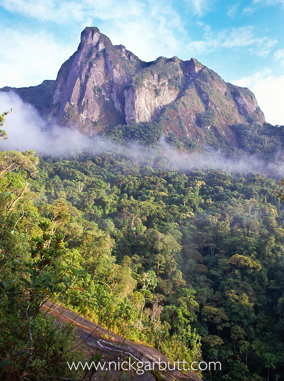Lowland rainforest with rocky outcrop, Ambatotsondrona ('leaning rock') and clouds. The view from Camp Marojejia (Camp 2). Marojejy National Park,  north east Madagascar