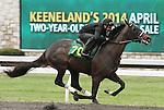April 03, 2014: Hip 70 Quality Road - Aray consigned by Murray Smith worked 1/8 in 10:2.  Candice Chavez/ESW/CSM
