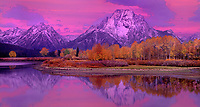 937000035 panoramic view - dawn alpenglow lights up fall colored aspens mount moran and the teton range with the snake river in the foreground at oxbow bend in grand tetons national park wyoming