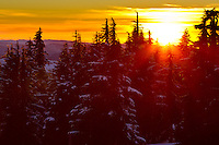 Sunset on Mt Hood, OR at Timberline Lodge provides dramatic backdrop with the sunset flare through the trees and rolling Oregon Cascade mountains in the background.