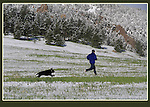 In Boulder, dogs are given the same rights as humans. Here, a man and its owner enjoy a run soon after a spring snowstorm. .  John leads private photo tours in Boulder and throughout Colorado. Year-round.