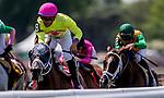 June 8, 2019 : #8, World of Trouble, ridden by jockey Manuel Franco, wins the Jaipur Invitational on Belmont Stakes Festival Saturday at Belmont Park in Elmont, New York. Kaz Ishida/Eclipse Sportswire/CSM