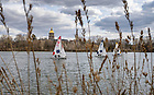 March 22, 2021; Sailboats on St. Joseph's Lake. (Photo by Barbara Johnston/University of Notre Dame)