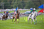 1 October 2011: Rockmani and Willie McCarthy win the Virginia bred/sired division of the training flat race at Virginia Fall Races in Middleburg, Va. Rockmani is owned by Celtic Venture Stable and trained by Charles McCann. Susan M. Carter/Eclipse Sportswire
