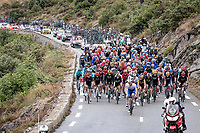 peloton up the Col de la Faye<br /> <br /> Stage 3 from Nice to Sisteron (198km)<br /> <br /> 107th Tour de France 2020 (2.UWT)<br /> (the 'postponed edition' held in september)<br /> <br /> ©kramon