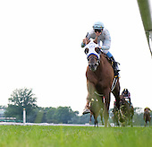Street Game wins the Hill Prince Stakes at Belmont Park with a rail-skimming ride from Ryan Curatolo.