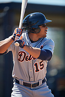 Detroit Tigers Teddy Hoffman (15) during a Minor League Spring Training game against the New York Yankees on March 21, 2018 at the New York Yankees Minor League Complex in Tampa, Florida.  (Mike Janes/Four Seam Images)