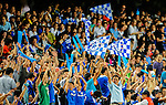 Chelsea fans cheer during the Asia Trophy pre-season friendly match between Chelsea and Aston Villa at the Hong Kong Stadium on July 30, 2011 in So Kon Po, Hong Kong. Photo by Victor Fraile / The Power of Sport Images
