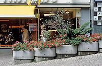 Marburg: Pedestrian Mall--planters. Photo '87.