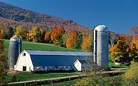 Farm scene at Danby, VT