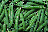 HS26-131a   Pea - shelling pea pods - Green Arrow variety