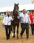 ORB before the 138th  running of the Grade I Preakness Stakes for 3-year olds, going 1 3/16 mile, at Pimlico Race Course.  Trainer D. Wayne Lukas.  Owners Calumet Farms