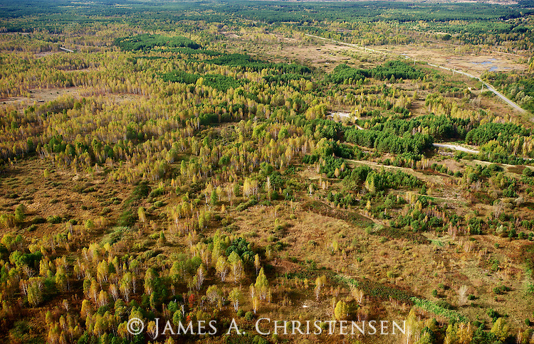 The Red Forest, an area of intensely radioactive forest, contaminated by the 1986 Chernobyl Nuclear Power Plant disaster, and subsequently bulldozed, the original trees buried. This image was shot from a Ukrainian government helicopter during a survey of the Chernobyl Exclusion Zone in October, 2012.