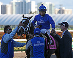 HALLANDALE BEACH, FL - FEBRUARY 11: Dickinson (KY) #8 with jockey Paco Lopez gets cleaned up before heading to the winners circle, after winning the Suwannee River GIII Stakes at Gulfstream Park on February 11, 2017 in Hallandale Beach, Florida. (Photo by Liz Lamont/Eclipse Sportswire/Getty Images)