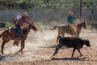 Cowboy roping and riding Cowboy Photo Cowboy, Cowboy and Cowgirl photographs of western ranches working with horses and cattle by western cowboy photographer Jess Lee. Photographing ranches big and small in Wyoming,Montana,Idaho,Oregon,Colorado,Nevada,Arizona,Utah,New Mexico. Fine Art Limited Edition Photography Of American Cowboys and Cowgirls by Jess Lee